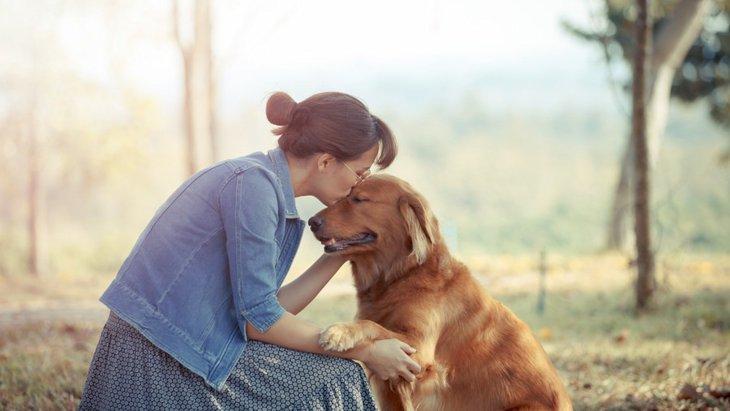 犬にとって理想的な飼い主とは?