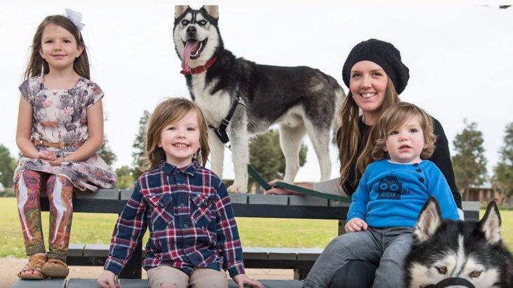 ひどい皮膚病に侵されボロボロに。生きる気力をなくしたハスキー犬に希望の光が!
