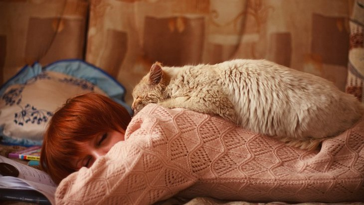 女性の飼い主は人間のパートナーよりも犬の隣の方が良く眠れるという調査結果