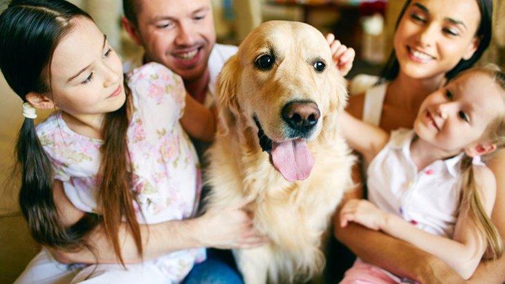犬にとって『家族』ってどんな存在?