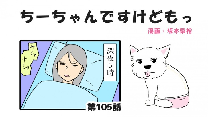 ちーちゃんですけどもっ【第105話】「ちーちゃんの子犬の時の話①」