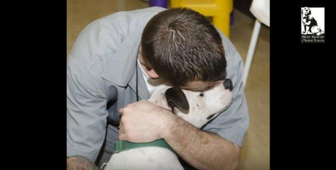 アメリカの刑務所の更生プログラム「犬のトレーナー養成」は人と犬を救う