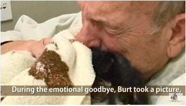 愛する犬を失った飼い主さん。喪失感の中で命を失った男性と犬の話。