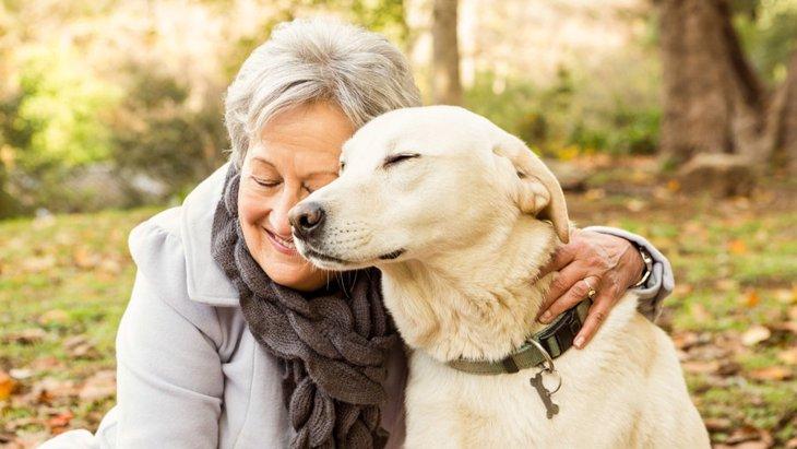 高齢犬との正しい接し方とは?絶対に無理はさせないで!