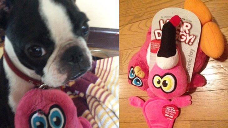 犬にしか聞こえない超音波のおもちゃ「HEARDOGGY」(まとめ)