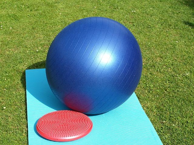 犬用バランスボールで体幹を鍛えよう!