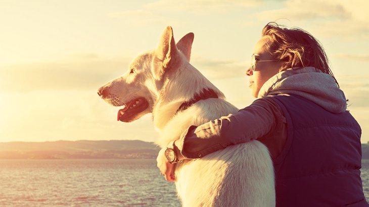 人間の寿命は犬からもらったもの 〜ルーマニア鳥獣譚〜