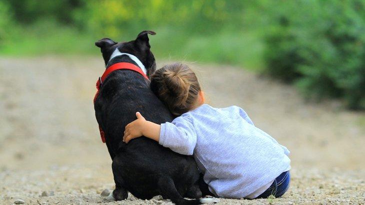 犬への「愛情」と「依存」の境界線はどこから?