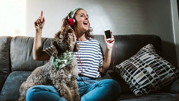 犬が好きな音楽とは?嫌いな音もあるって本当?