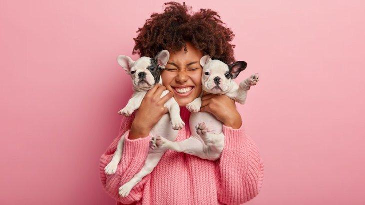 二匹目の犬を迎えるならしっかり準備を!先住犬との関係や良いタイミングなど