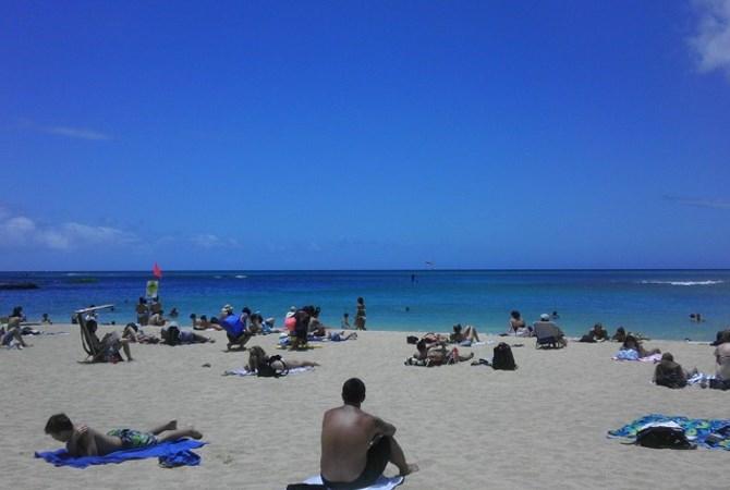 ウメとの~んびり! in Hawaii ~お気に入りドッグパーク編~