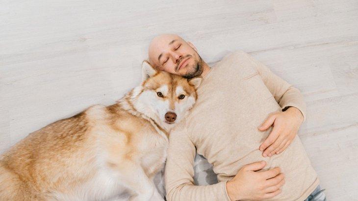 犬があなたに「大好き!」と伝えているサイン4選