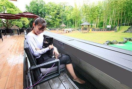 「愛犬の駅」に遊びに行こう!伊豆にあるドライブインをワンコと楽しむ方法