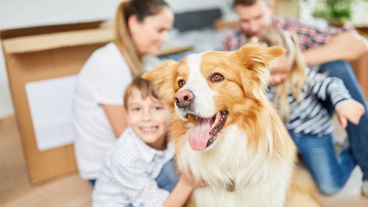 愛犬と新生活のスタート!ペット可物件を選ぶポイント5つ