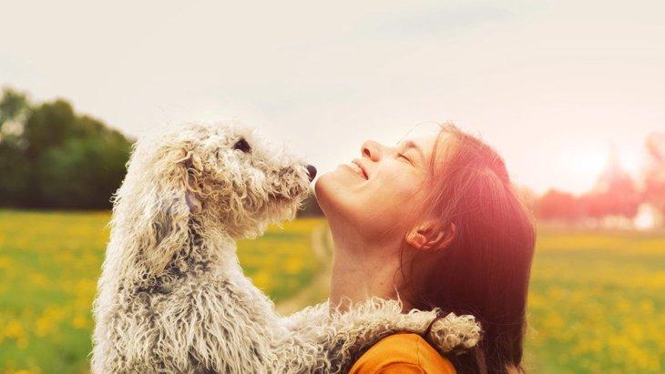 犬に愛されている人がしている4つのこと