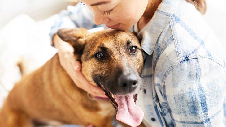 愛犬にイライラしてしまう時に絶対してはいけないNG行為3選