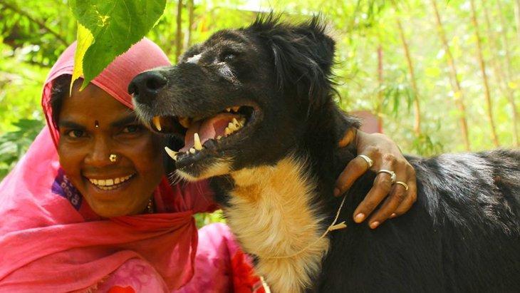 インドで動物を救う難しさと未来。保護団体『AnimalAid Unlimited』インタビュー