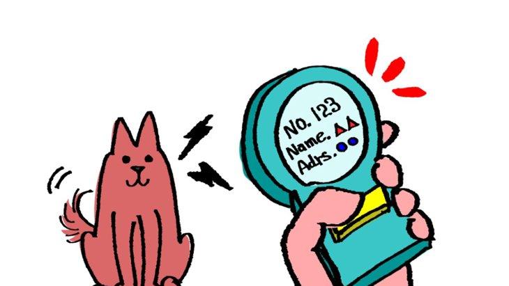 犬のマイクロチップの基礎知識