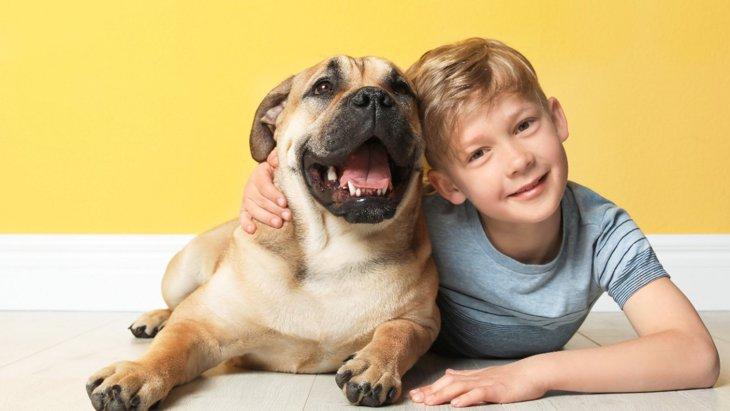 児童の音読に犬が立ち会うことの効果を生理学的に検証した結果とは?