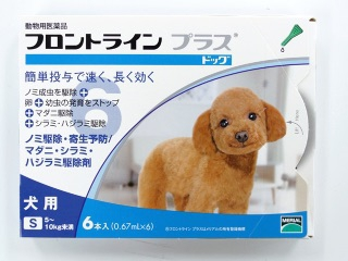 犬のノミ・ダニ予防対策にフロントライン!使い方と使う日のコツ