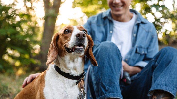 犬にとって『良い刺激』を与える方法5選!違うことを取り入れて脳を活性化させるコツ