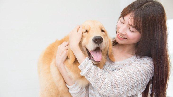 犬はライバルの姿が見えなくてもヤキモチを妬くという研究結果