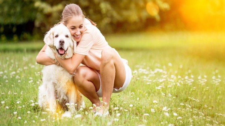今すぐ実践♡犬が愛情を感じてくれる『飼い主の行動』5選