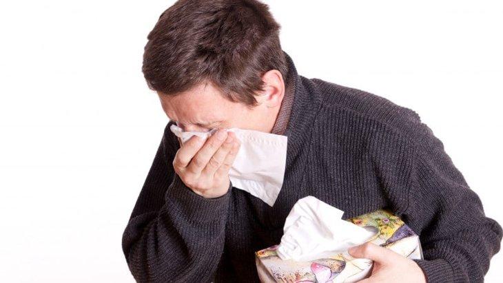 犬アレルギーの症状や原因から治療や予防対策まで