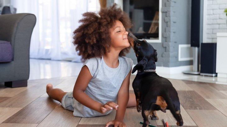 犬と「良い関係を築く」ために気をつけるべき3つのこと