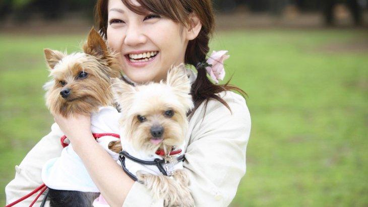 犬の信頼を失ってしまう可能性がある飼い主の行動4つ