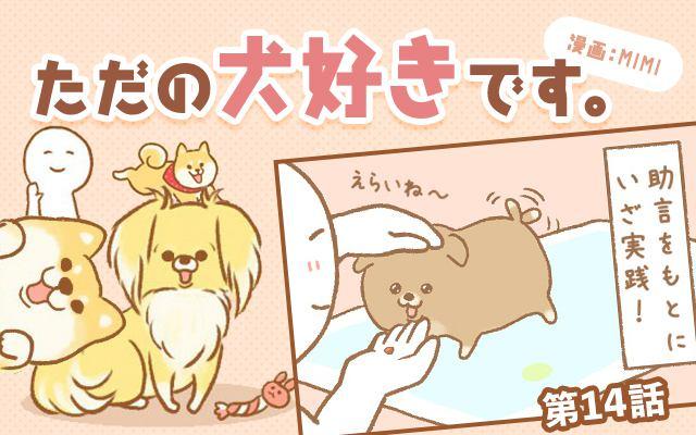 ただの犬好きです。【第14話】「おトイレ訓練」
