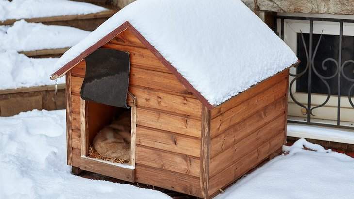 犬の小屋に効果的な防寒対策は?便利な防寒アイテムや注意点まで