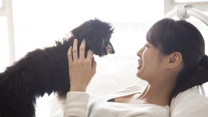 『嫉妬深い犬』がやりがちな仕草5選