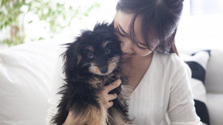 犬が『落ち着きのない行動』をする原因6選!病気やストレスの可能性も