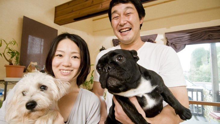 犬好きな人に多い4つの特徴