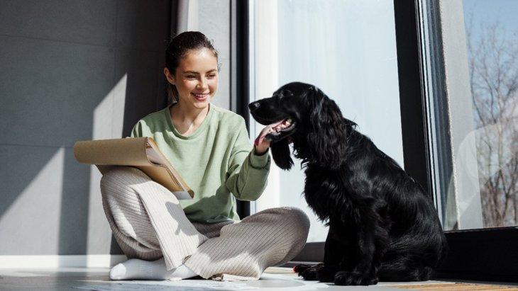 犬が不幸になってしまう『絶対NGな飼い方』6選