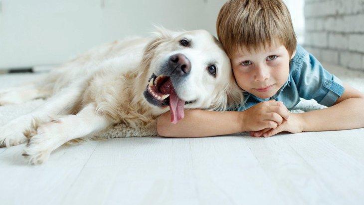 犬に愛されている人がしている5つのこと