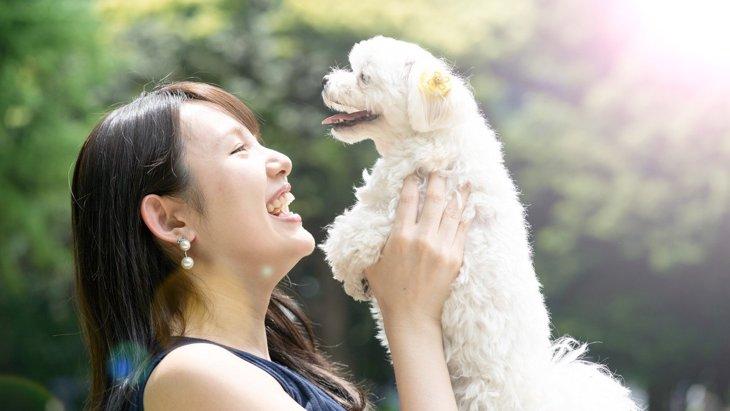 愛犬との絆が強まる上手な『ほめ方』!タイミングやコツを解説