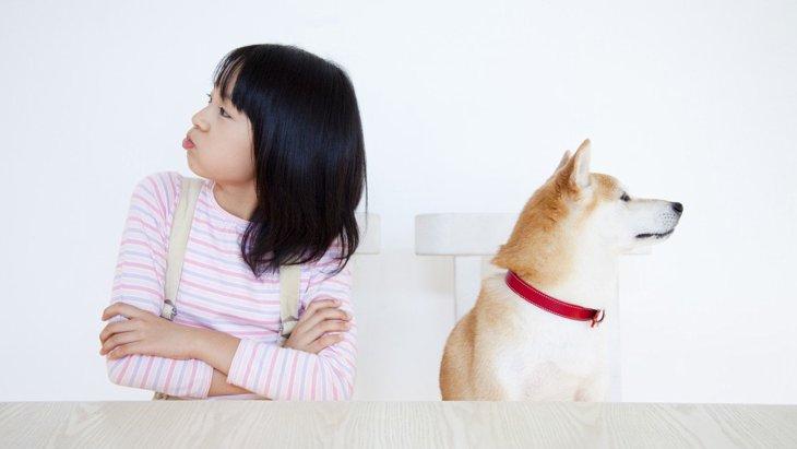 犬を『衝動買い』してしまうと起きる後悔5選