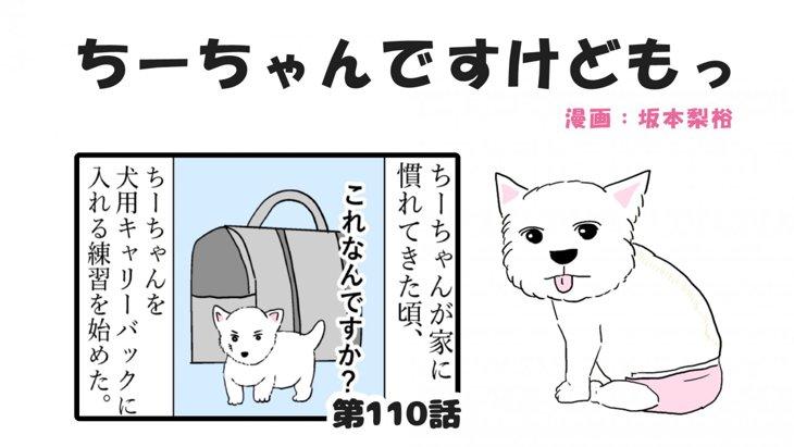 ちーちゃんですけどもっ【第110話】「ちーちゃん鞄事件①」