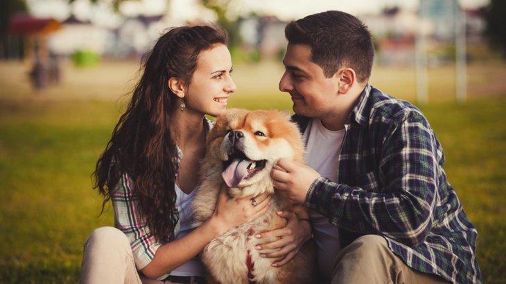 愛犬の前でケンカをするとどうなる?犬の行動と4つの心理