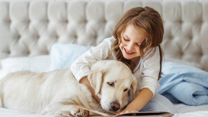 「動物介在読書プログラム」ってなに?どんな効果があるの?