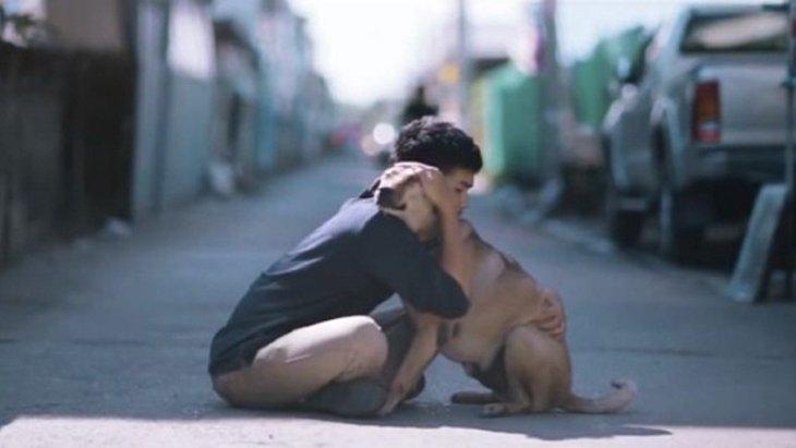 「ファースト・ハグ」野良犬達に心からハグを送る幸せなプロジェクト