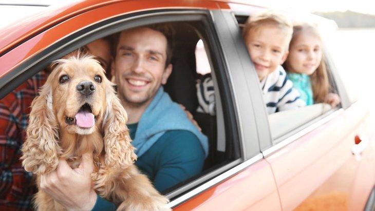 犬が車酔いする原因!注意したい症状、予防薬や対策法まで