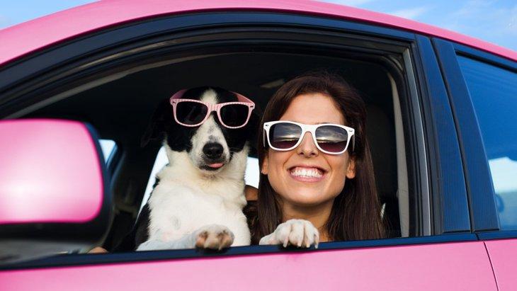 犬との旅行あるある5選