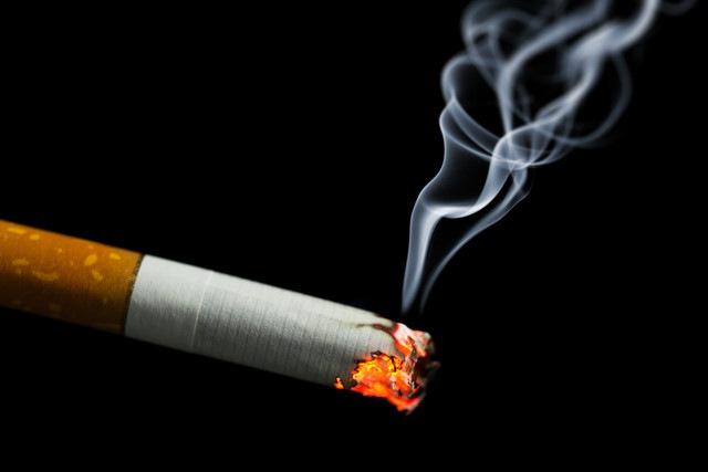 百害あって一利なし!愛犬をタバコの害から守ろう!