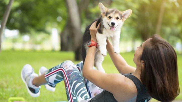 愛犬と長く一緒にいるための犬の『健康法』5つ