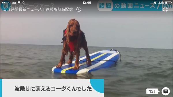 タレント犬コーダのテイクわん! ~祝☆放送&掲載のお知らせ~