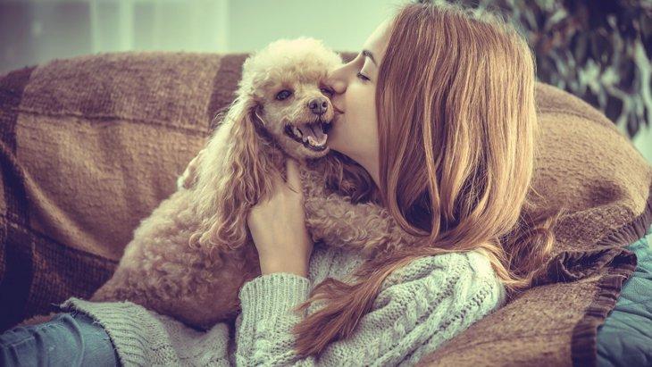 あなたが愛犬と出会えた確率って知っていますか?