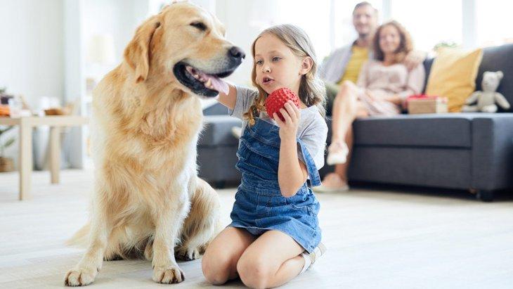 自閉症スペクトラムのための介助犬、その効果を科学的に研究